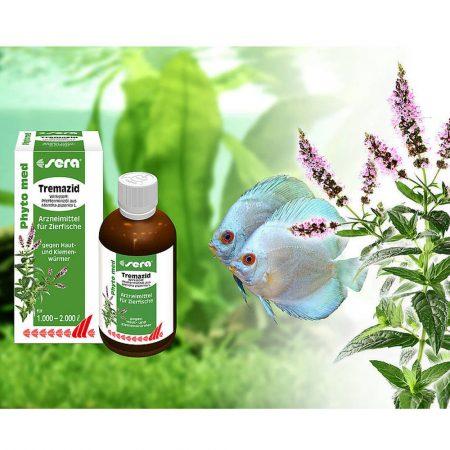 Neue Revolution! Sera entwickelte neues pflanzliches Heilmittel gegen Haut- und Kiemenwürmer.......