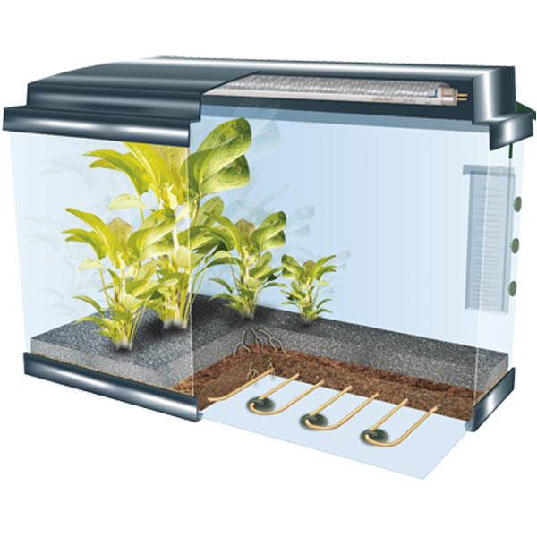 Dennerle boden fluter heizung 75 watt g nstig kaufen bei for Aquarium heizung