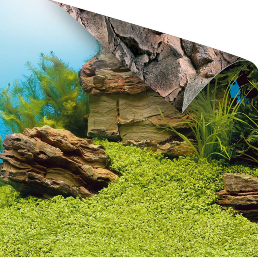 juwel fotorueckwand pflanzen steine 100x50cm fuer aquarium. Black Bedroom Furniture Sets. Home Design Ideas
