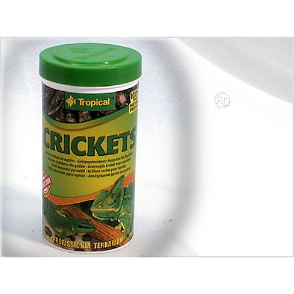 Tropical Crickets Getrocknete Heimchen 100ml
