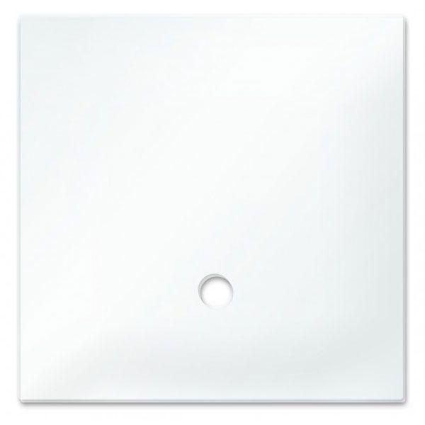 Dennerle Abdeckscheibe NANO Cube 30L