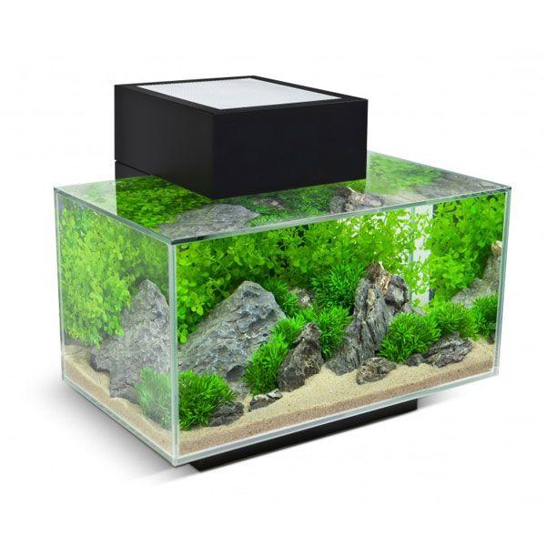 Fluval Edge Nano-Aquarium Farbe: Schwarz