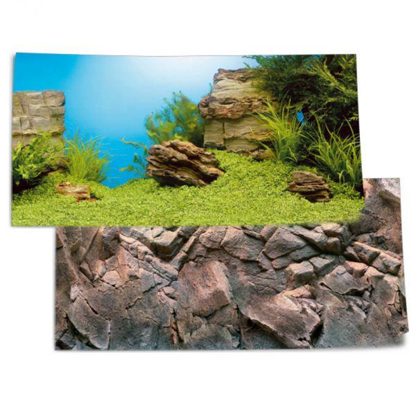 Juwel Fotorückwand Pflanzen Steine 100x50cm für...