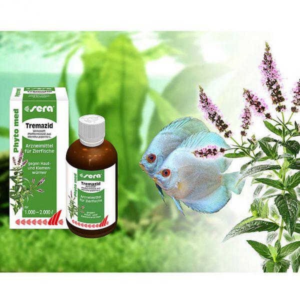 sera Phyto med Tremazid 100 ml pflanzliches Heilmittel bei Haut-  bei Aqua Design