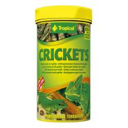 Tropical Crickets Getrocknete Heimchen 25g (250ml Dose)